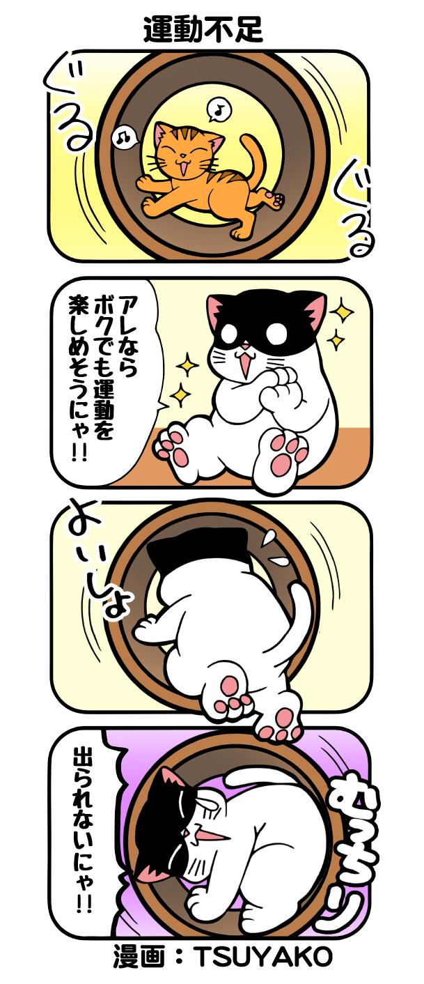 undobusoku