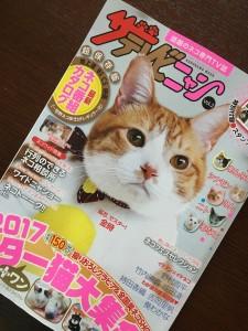 表紙は、「猫忍」で一躍スター猫の仲間入りをした「金時」。