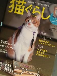 表紙は、「猫忍」の主演猫「金時」☆ 映画出演時よりも、ちょっとスリムになったかも!?