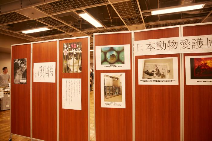 日本動物愛護協会の「小さな命の写真展 猫Version」は、多くのお客様に感動と問題提起を投げかけました。