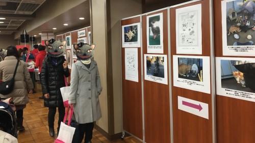 日本動物愛護協会の「小さな命の写真展」。来場者さんも真剣に見てくださっていました。