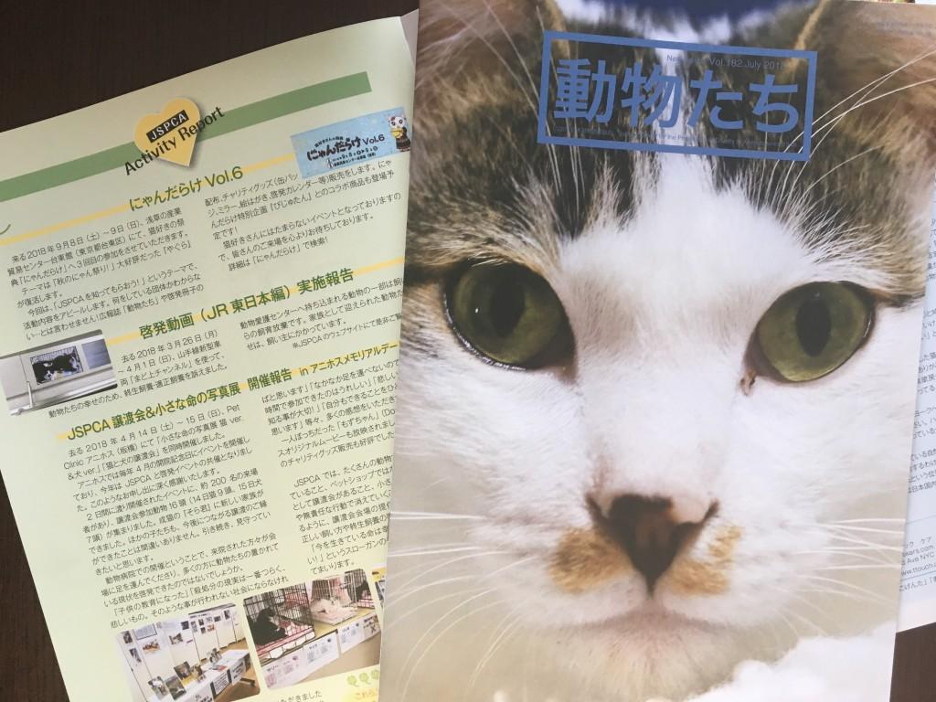 「ワンコイン募金」(募金は、飼い主のいない猫の不妊去勢助成金に充てられます)で、みなさんも日本動物愛護協会の活動を応援できます!