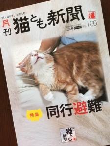 全34ページ/定価240円。今号の特集は、今、猫飼いさんが一番考えなくてはならない「同時避難」です。