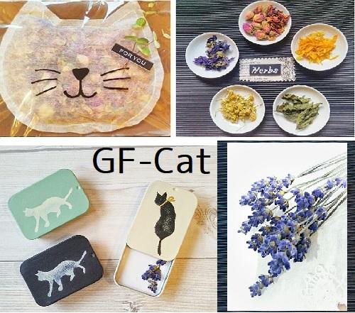 gf-cat2019