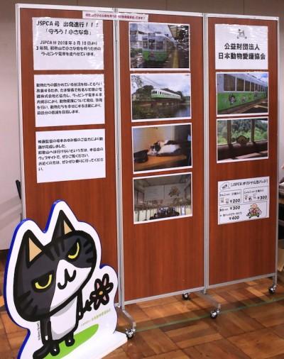 日本動物愛護協会のミニ写真展(写真:Catherine・G)